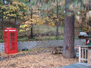 Phone box, autumn