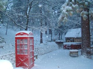 Phone box, winter