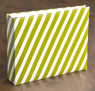 Seasonal Stripes Designer 8 x8 Ring album, 132259, $11.21