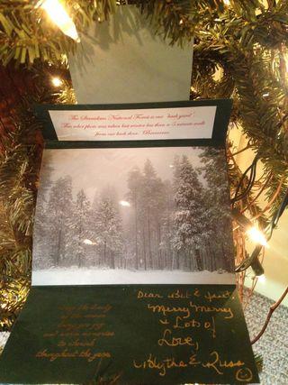 2005 snowy trees open 200?