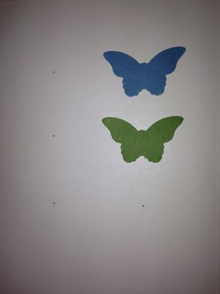 Butterfly placement marks